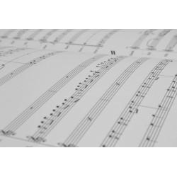 <FONT><B></B></FONT><br />Composition